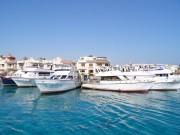 yacht (8)